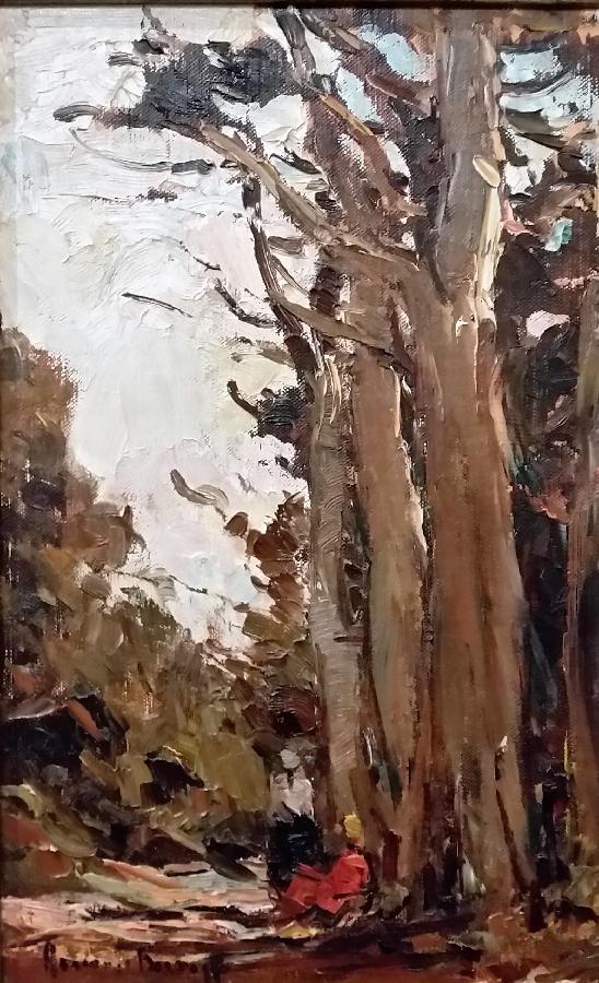 adriaan-boshoff--trees