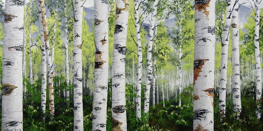 danie-marais--green-canadian-birch