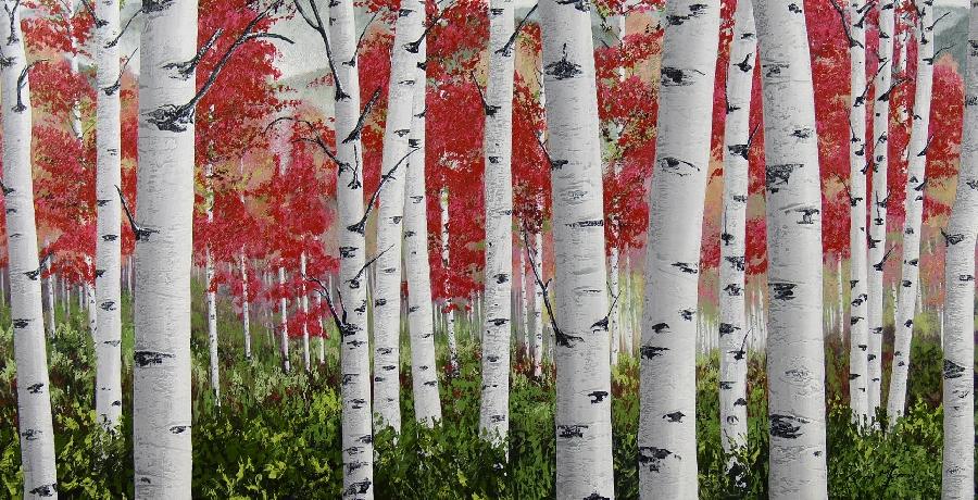 danie-marais--autumn-canadian-birch