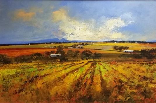 derek-van-rensburg--vineyard-overberg