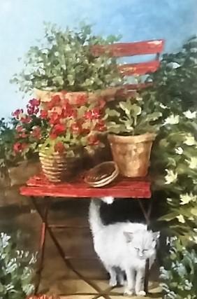 ohna--cat