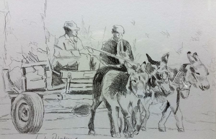 linda-robertson--donkey-cart