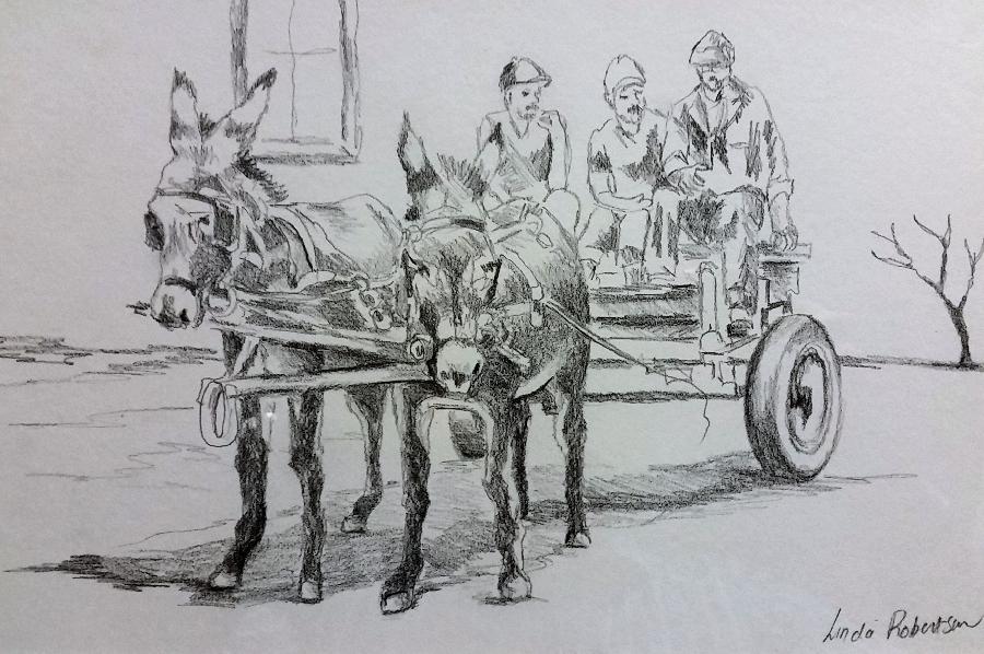 linda-robertson--donkey-cart-2