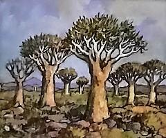 conrad-theys--quiver-tree-pastel