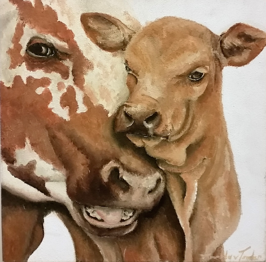 amelda-van-tonder--cow-and-calf