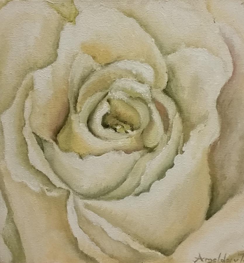 amelda-van-tonder--white-rose