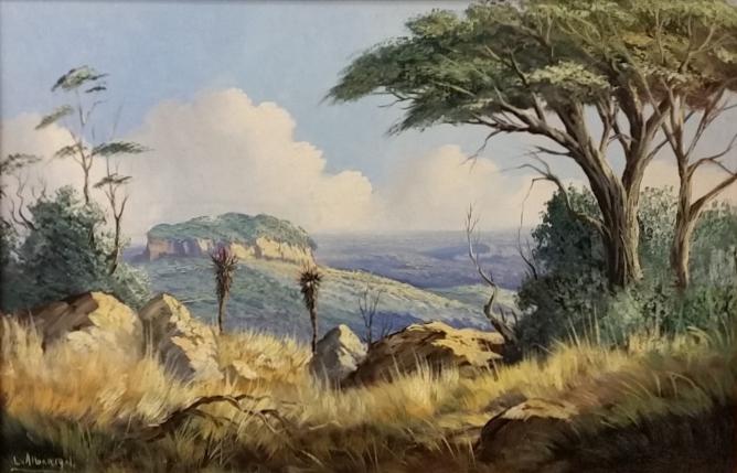 leslie-albertyn--aloe-landscape-2